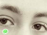 ״אבישגיגים מהלב״ – בעיניים שלהם…
