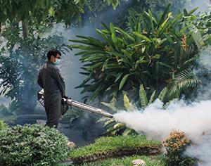 איך נתמודד מפגיעה אפשרית מיתושים בקיץ?