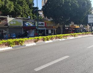 """עיריית רחובות יוצאת במבצע לטיפול ב""""ערוגות פתוחות"""""""