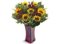 משלוחי פרחים מרשת חנויות פרחים איכותית